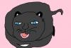我が家の黒猫[でんでん虫の詩とエッセーとイラスト]