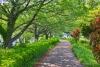里山ガーデンフェスタ[レウサイトフォトグラフィー]