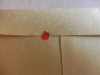 手紙20[病気ですが旅行しています]
