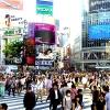 日本のチャネリングの現況2019.3.25[チャネリング23th. 【宇宙Now light】 高品質を目指します!!]