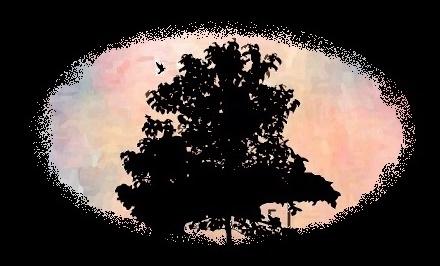 TALES OF  NIGHTINGALE-ブロくる