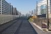 横浜のイチョウの黄葉他の写真です。その3[レウサイトフォトグラフィー]